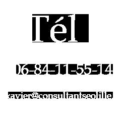 telephone consultant en référencement a lille
